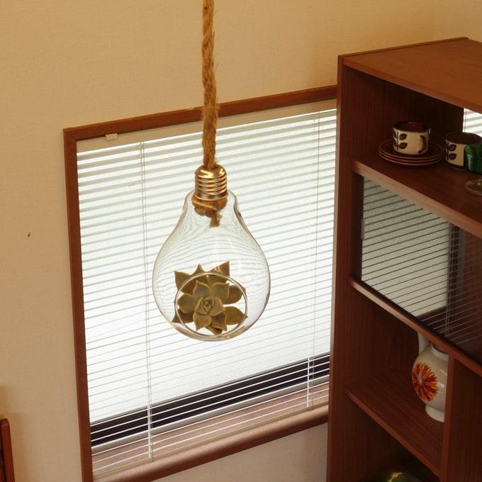 ガラスの植物ホルダー ヴィンテージ
